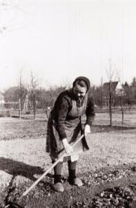 Viel Mühe und Handarbeit war nötig um aus dem Ackerland Gartenland zu machen und so die Versorgung mit Grundnahrungsmitteln wie Kartoffeln, Gemüse usw. sicherzustellen... (Ebeling)