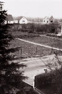 """Das sieht man auch hier: Der Feldweg """"Ginsterbusch"""" mit Blick in Richtung Am Sauerwinkel wo nun auch gebaut wurde... (Strecker)"""