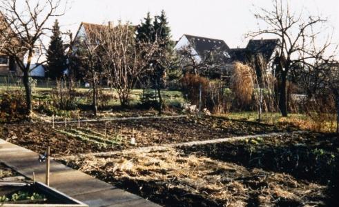 Auch heute noch gibt es in der Siedlung  Gemüseland  - Aber wohl mehr als Hobby... (Preihs 1986)