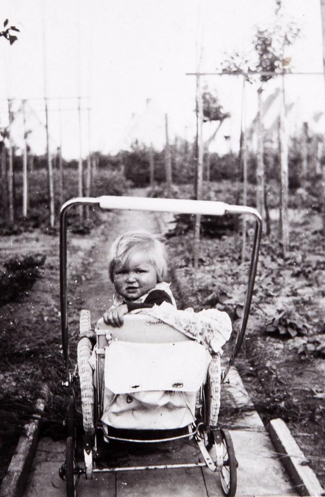 Die Kinder von vorgestern wurden die Eltern von gestern und sind die Großeltern von heute... (Hiller 1942)
